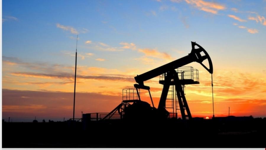 أوبك تتوقع تراجعا أشد للطلب النفطي مع استمرار تحدي الفيروس