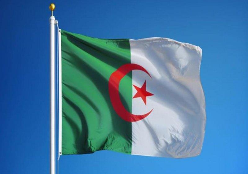 الجزائر تسجل 163 إصابة جديدة بفيروس كورونا المستجد