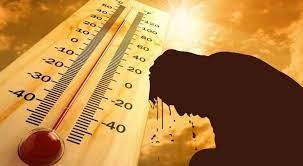 عاجل  الأمن التعرض لأشعة الشمس أثناء الصيام يُفقد التركيز أثناء القيادة