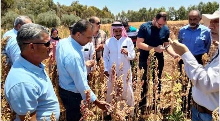 يوم حقلي في البحوث الزراعية حول زراعة الكينوا